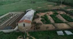Vendo Propriedade em Monteiro com 44,3 ha ideal para Criação de Caprinos