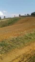 Terreno de planta 4 alq. e 34 litros em Quitandinha-PR