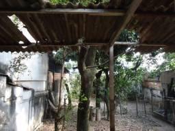Loteamento/condomínio à venda em Padre eustáquio, Belo horizonte cod:5524