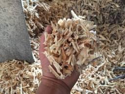 Serragem de Pinus maravalha em sacos passo cartão