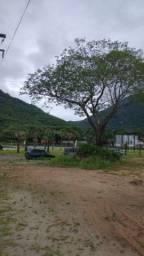 Lotes De Alto Padrão a 02 minutos do centro de Pacatuba