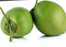 Promoção coco verde