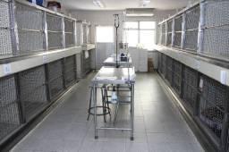 Clinica Veterinária (Hospital) - Passo Ponto