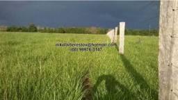 Fazenda 111 hectares nordeste mt nikolaiimoveis