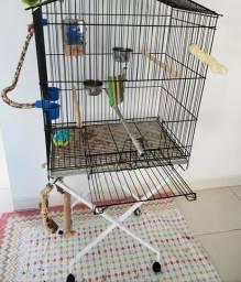 Gaiola para Papagaio ou calopsitas