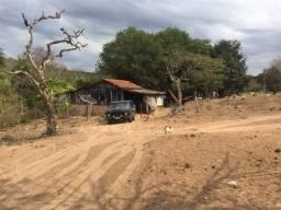 """Fazenda a 40 km de São Gabriel D""""oeste"""