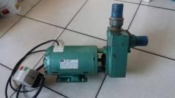 Bomba de irrigação profissional da marca Thebe 3cv, 220/380w