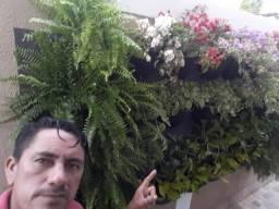 Adriano Cardoso jardinagem e paisagismo