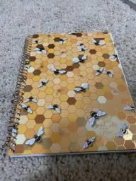 Cadernos novos