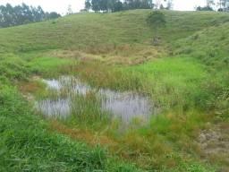 50 hectares Santo Amaro para investidores nascentes pastagens e boa localização