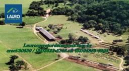 Fazenda com 730 ha. na Região de Sete Lagoas