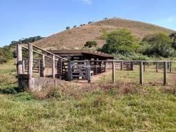 Fazenda em Juiz de Fora/MG 288 hectares