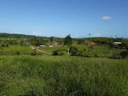 Terrenos Lindos para Montar seu Sitio em Balneário Piçarras