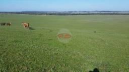 240 hectares, próximo a Restinga Seca