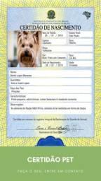 Rg e Certidões Pet