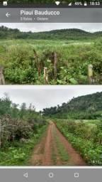Propriedade no estado do Piauí 66 hectares com documentos