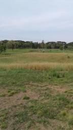 Fazenda em Quitandinha-PR