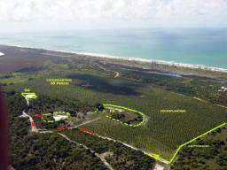 Fazenda no Conde 65 hectares Coqueiros Produzindo - Linha Verde