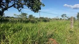 Fazenda 15 alqueires   40 km Goiânia   10 km dream park