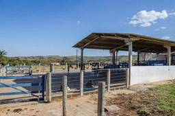 Fazenda à venda, 2400000 m² por R$ 8.000.000,00 - Zona Rural - São João Batista do Glória/