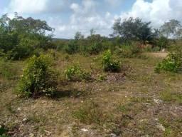 Título do anúncio: Vendo terreno em Itamaracá