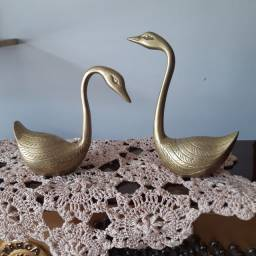 Par de cisnes