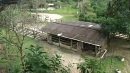 Linda chácara em Guapimirim - Vale das Pedrinhas oportunidade!!!!