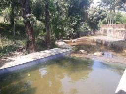 Sítio com 5 dormitórios para alugar, 6000 m² por R$ 4.000,00/dia - Zona Rural - Macaé/RJ