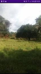 Estou a procura de fazenda p/ARRENDAR ( na região de Crixás)