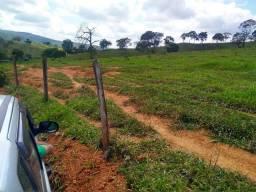 Excelente fazenda em Pitangui.