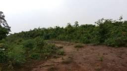 Fazenda no município de Riachão-MA
