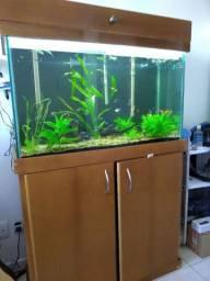 Vendo aquário completo de 240L