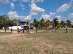 Fazenda de 22.000 mil Hectares Pantanal alto