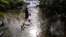Sítio à venda, 8,7 hectares por R$ 450.000 - Zona Rural - Cristais Paulista/SP