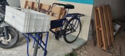 Bicicleta Cargueira 75 9  *