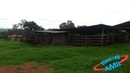 Fazenda 39,70 alqueires Piracanjuba Goias
