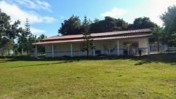 Fazenda em Monte Alegre - Com 80,52 Ha -Com Açude