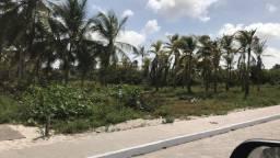 Ótimo terreno em Santo Amaro do Maranhão - Lençóis Maranhenses