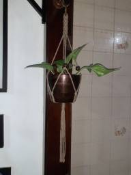 Suporte Planta em Macramê (Sem Vaso e Sem Planta)
