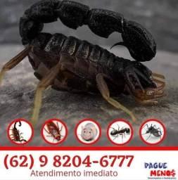 Título do anúncio: Dedetizadora de escorpião