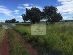 Fazenda com - 88 alqueires - R$ 3.000.000 - Miracema do TO.