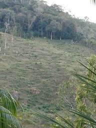 Vendo sítio de 8 alqueires=19 hectares