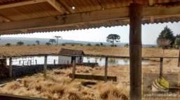 Fazenda para venda em lages, santa terezinha do boqueirão, 8 dormitórios, 4 banheiros