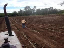 Sitio 15 hectares