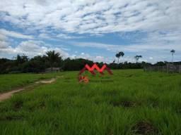 Sítio à venda, 450000 m² por R$ 400.000 - Canutama/AM