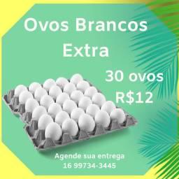 Ovos Brancos Extra Grandes