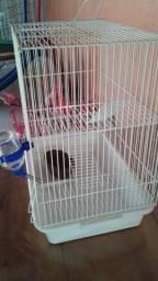 Gaiola para Hamster nova com assessorios