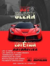 serviços de limpeza automotiva  profissional