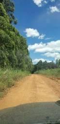 Chácaras 2 hectares parcela