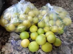Limão galego orgânico ideal para sucos e bebidas